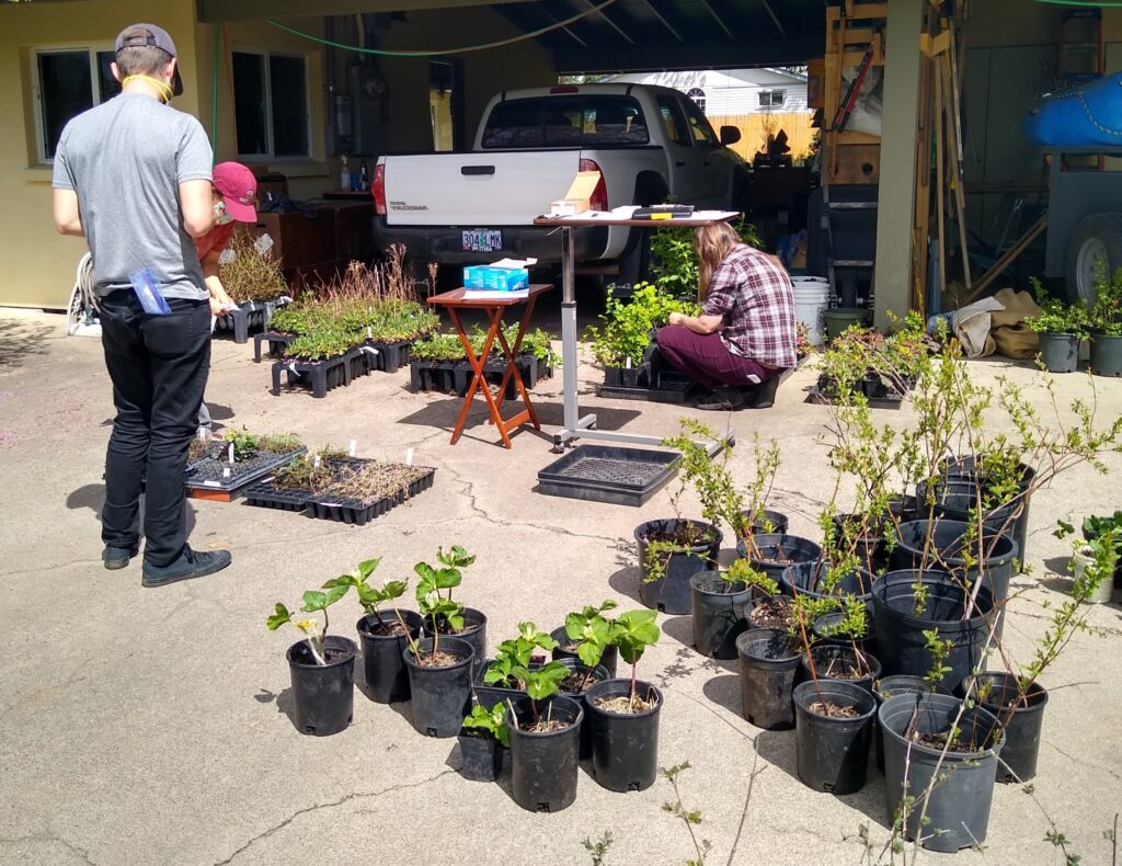 RNPP volunteers organize plants for the plant sale